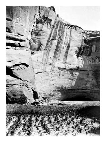 Navajo Farming Giclée-Druck