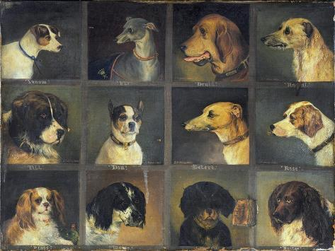 Twelve Favourite Dogs, 1883 Giclée-Druck