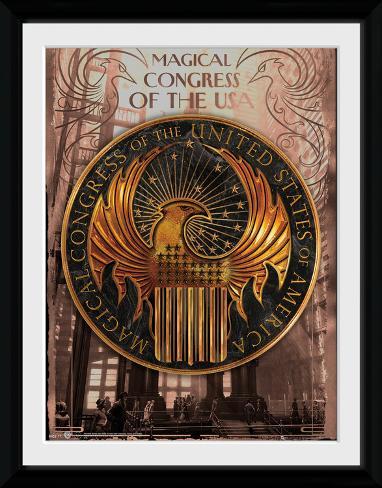 Fantastic Beasts - Magical Congress Sammlerdruck