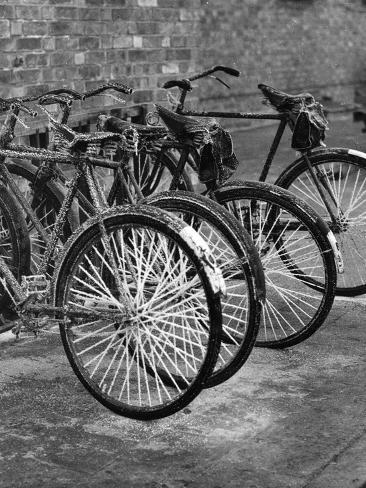Frost Bike Fotografie-Druck