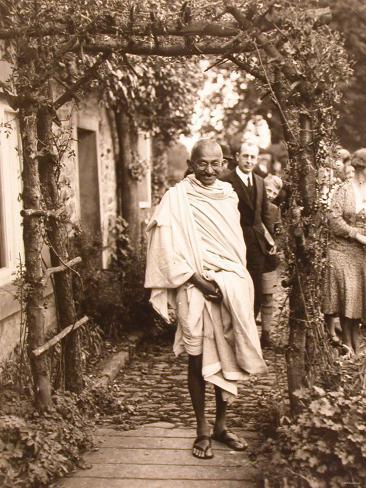 Image Result For Zitate Mahatma Gandhi Tiere