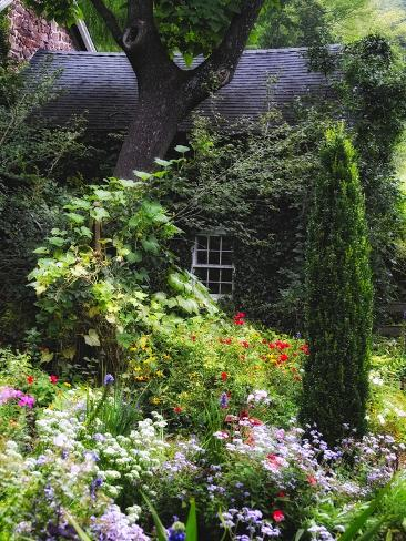 Hide Away Dream House Fotoprint Van George Oze Bij
