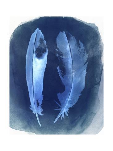 Feather Negatives I Kunstdruck