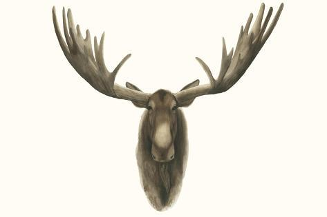Moose Bust Kunstdruck