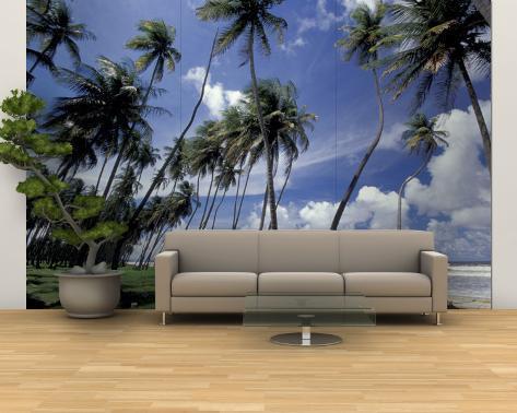 view of manzanilla bay port of spain trinidad caribbean fototapete gro von greg johnston. Black Bedroom Furniture Sets. Home Design Ideas