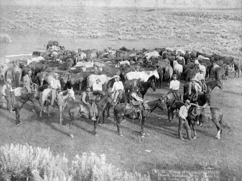 Group of Cowboys and their Horses, Sheridan, Wyoming, C.1890 Fotografie-Druck