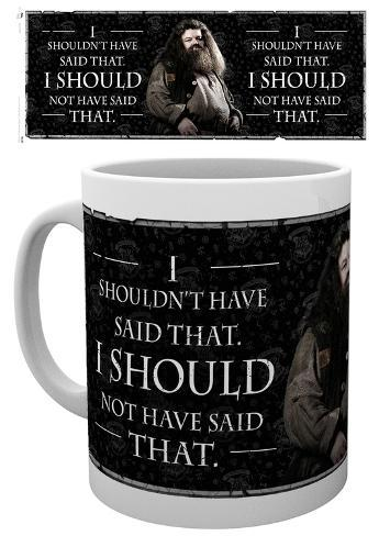Harry Potter - Hagrid Quote Mug Becher