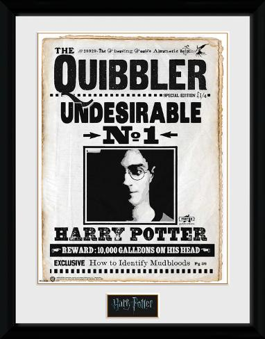 Harry Potter - Quibbler Verzamelaarsprint