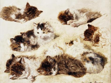A Study of Kittens, 1898 Giclée-Druck