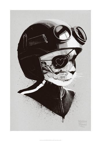 Cat Racer Kunstdruck