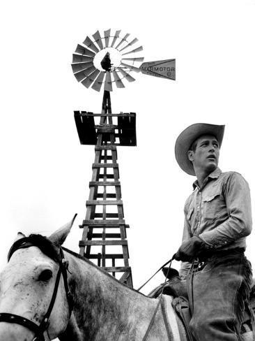 Hud, Paul Newman, 1963 Foto