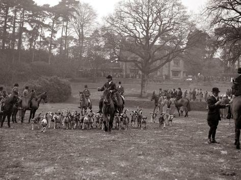 Hunting Men Riding Horses with a Pack of Hounds Fotografie-Druck