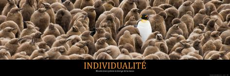 Individualité (French Translation) Foto