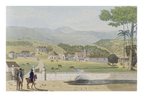 Montpelier Estates, St James, from 'A Picturesque Tour of the Island of Jamaica' Giclée-Druck