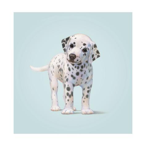 Dog Giclée-Druck