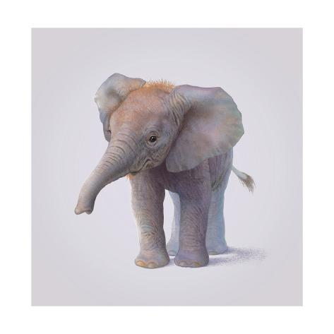 Elephant/Elefanten Giclée-Druck