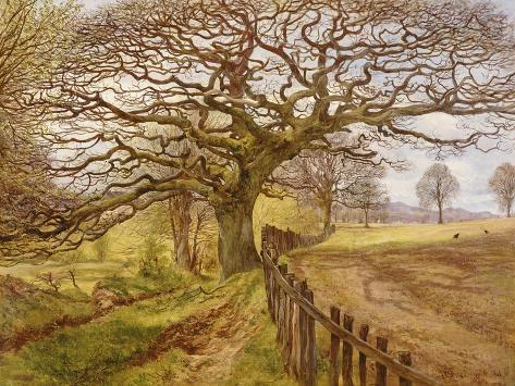The Tree, 1861 Giclée-Druck