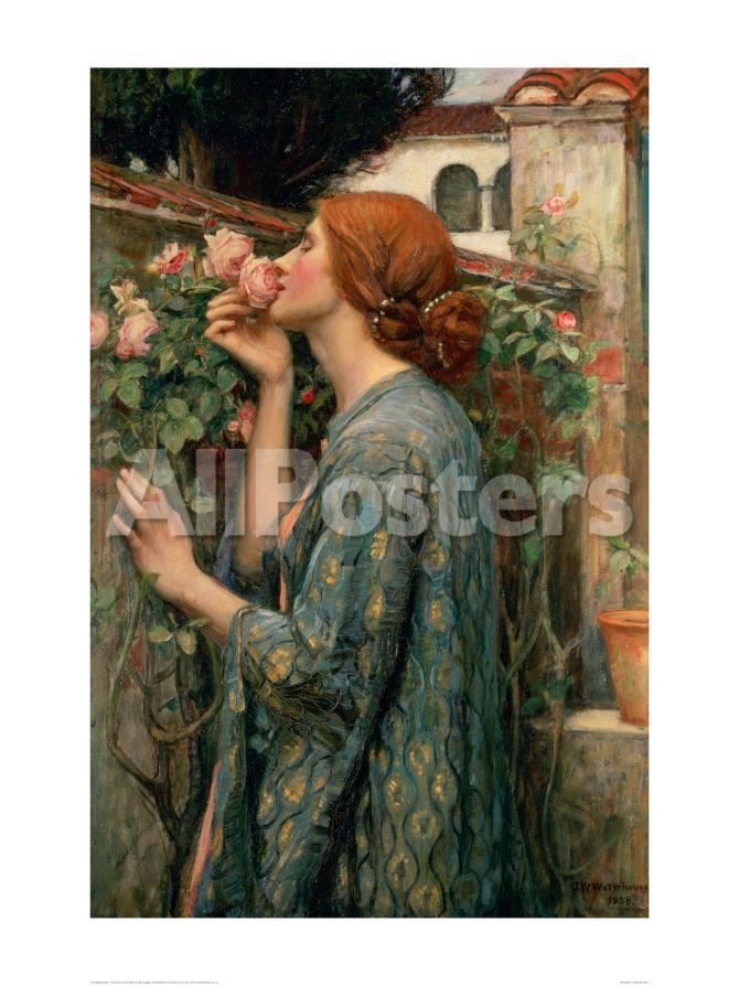 The Soul of the Rose Giclée-Druck von John William Waterhouse bei ...