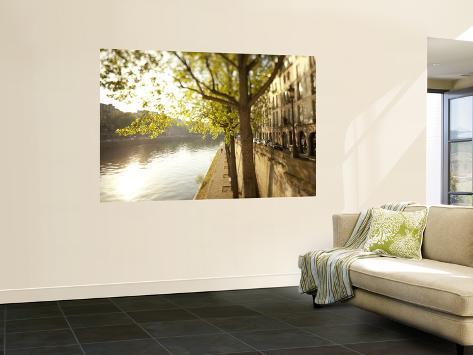River Seine and Ile St. Louis, Paris, France Fototapete