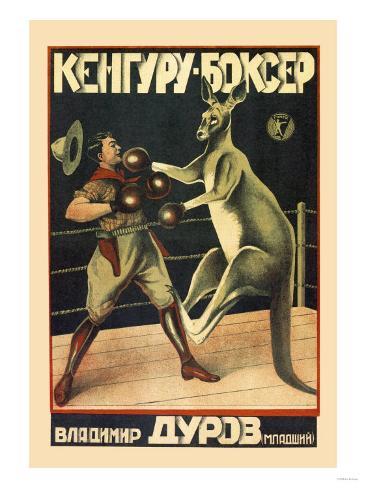Kangaroo Boxer Kunstdruk
