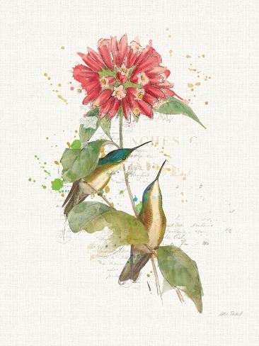 Colorful Hummingbirds I Kunstdruck