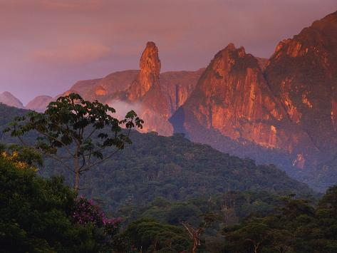 Rainforest and Mountains Fotografie-Druck
