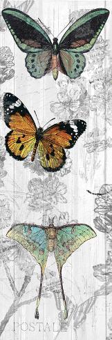 Butterflies Are Free 1 Kunstdruck