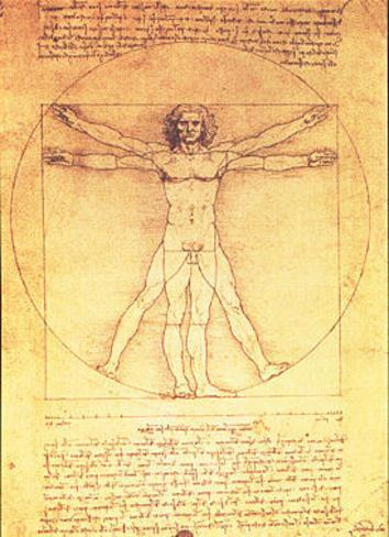 Vitruvian Man Proportions of the Human Figure Poster von Leonardo da ...