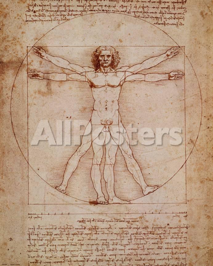 Vitruvianischer Mensch, Vitruvian Man, ca. 1492 Kunstdrucke von ...