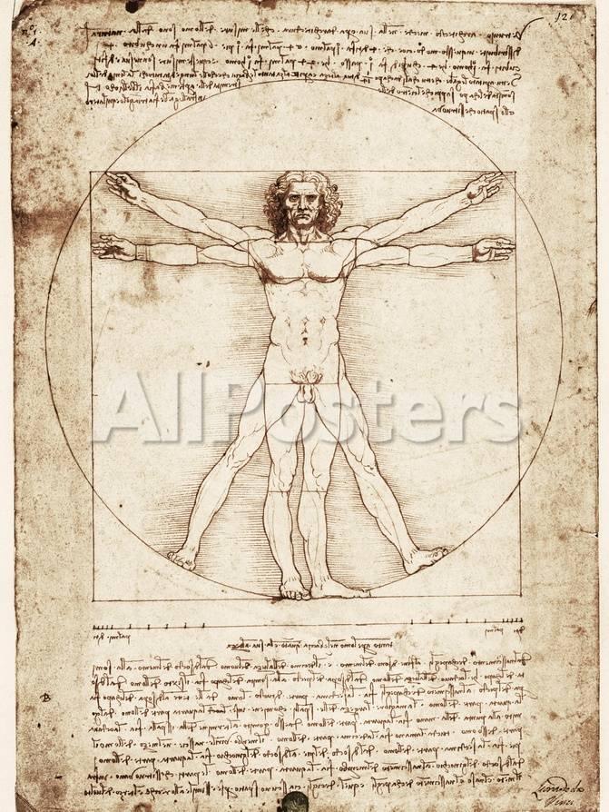 Vitruvianischer Mensch Poster von Leonardo da Vinci bei AllPosters.de