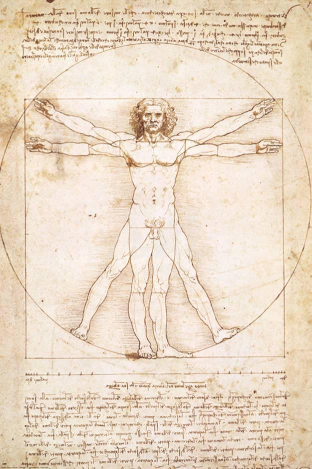 Vitruvianischer Mensch Bedruckte aufgespannte Leinwand von Leonardo ...