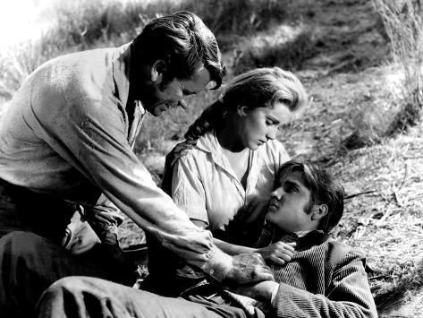Love Me Tender, Richard Egan, Debra Paget, Elvis Presley, 1956, Dying Foto