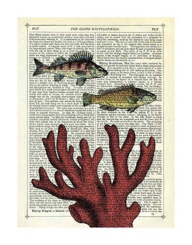 Two Fish with Coral Kunstdruck