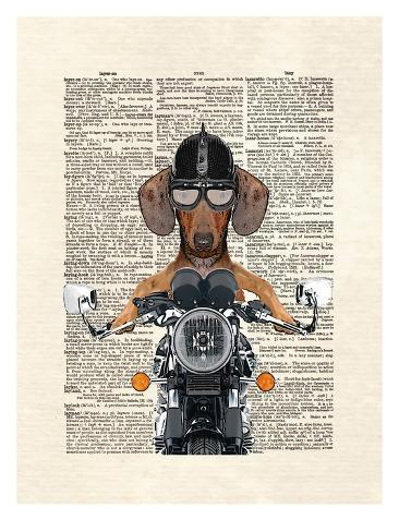 Doxie Motorcycle Kunstdruck
