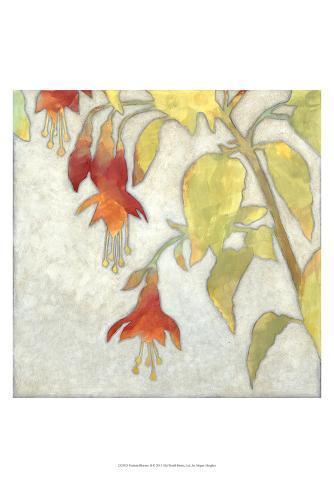 Fuchsia Blooms II Kunstdruck