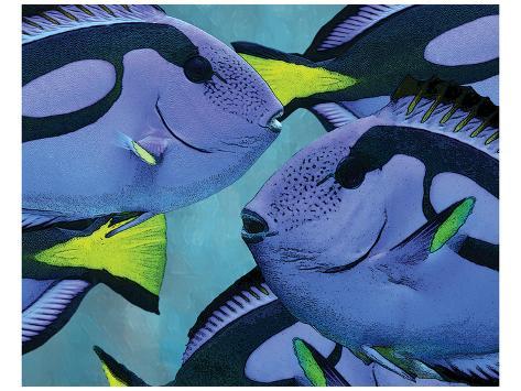Blue Tang II Kunstdruck