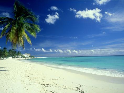 Beach Scene Barbados Fotoprint Van Mike England Bij Allpostersnl