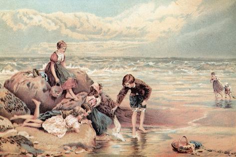 The Dead Sea-Bird Giclée-Druck