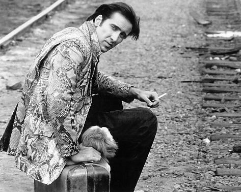 Nicolas Cage - Wild at Heart Foto