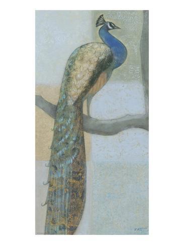 Resting Peacock I Kunstdruck