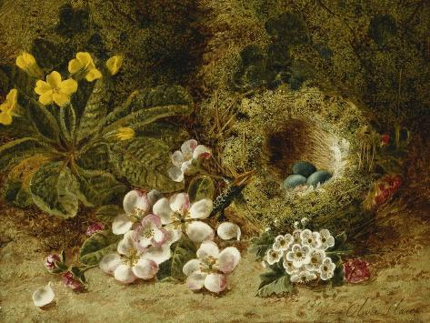 Apple Blossoms, a Primrose and Birds Nest on a Mossy Bank Giclée-Druck