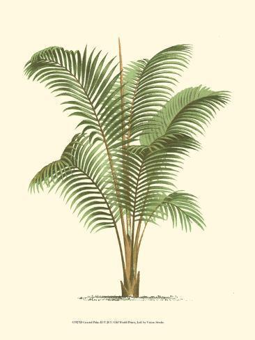 Palme an der Küste II Kunstdruck