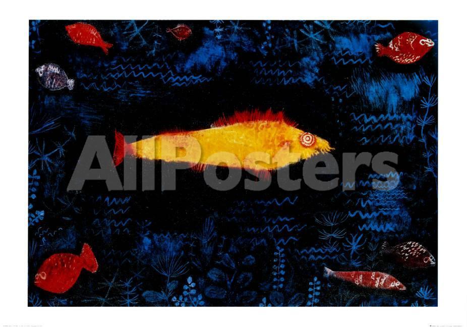 Der goldene Fisch Poster von Paul Klee bei AllPosters.de