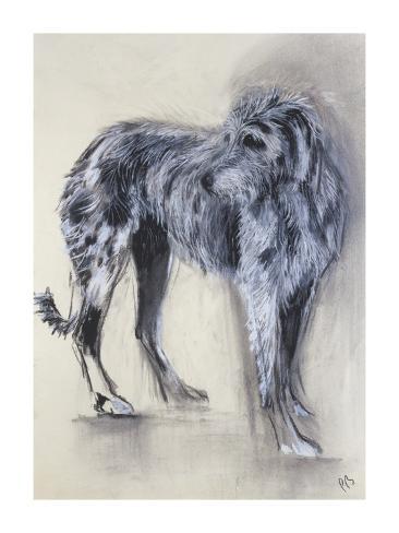 Irish Wolfhound Giclée-Premiumdruck