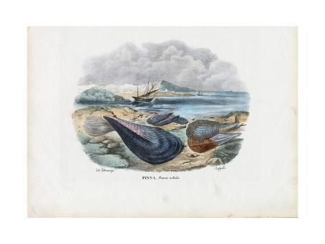 Mussels, 1863-79 Giclée-Druck