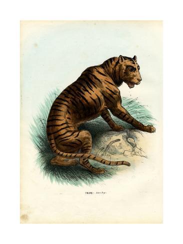 Tiger, 1863-79 Giclée-Druck