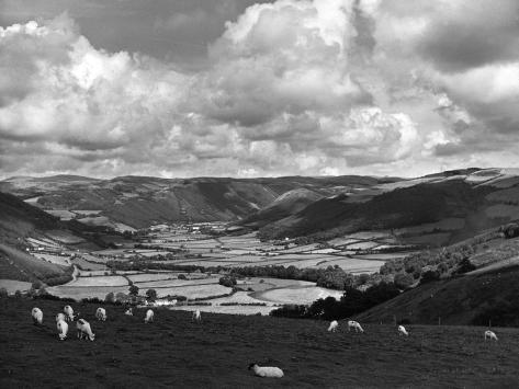 Rheidol Valley Fotografie-Druck