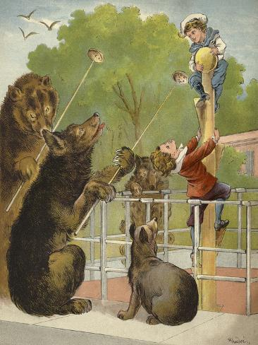 Bears Baiting Boys Giclée-Druck