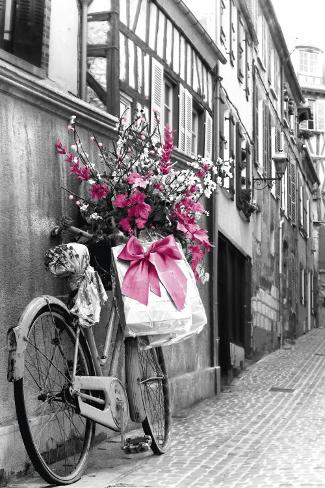 Rosa Blumen Poster