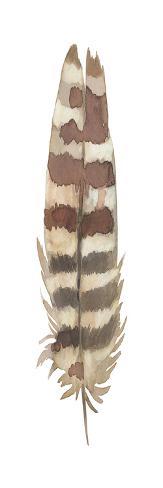 Feather Plume I Kunstdruck